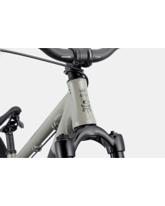Cannondale Dave 2021 dirt-pyörä